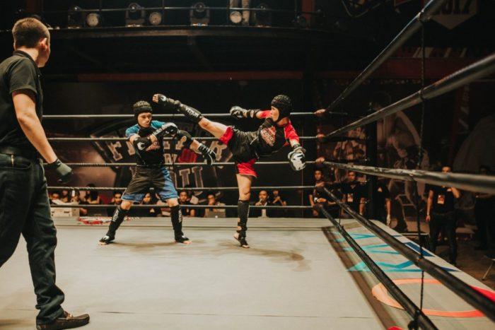 espinilleras de artes marciales